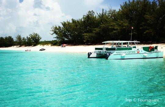 Rose Island1