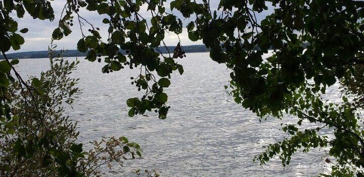 Hatanpää Arboretum3