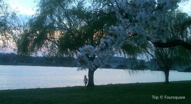 West Potomac Park2