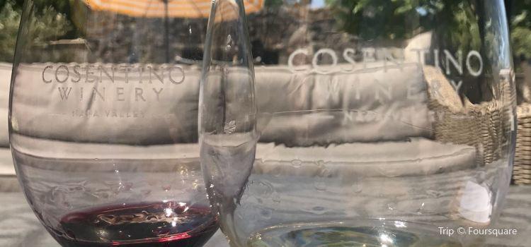 Cosentino Winery3
