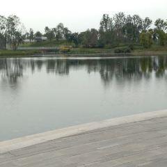 嬌子公園用戶圖片