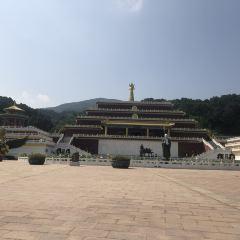Wanfoyuan User Photo