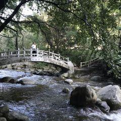 紅河谷森林公園用戶圖片
