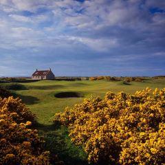 Royal County Down Golf Club User Photo