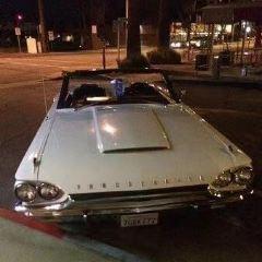 Palm Canyon Drive User Photo