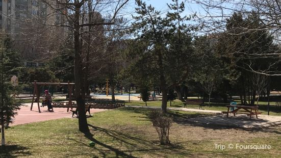 Erciyes Evler Parkı