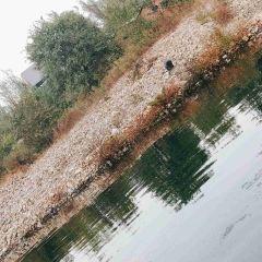 關山湖用戶圖片