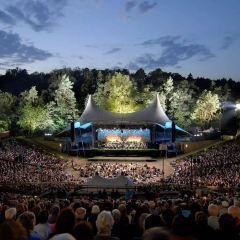 森林劇場用戶圖片