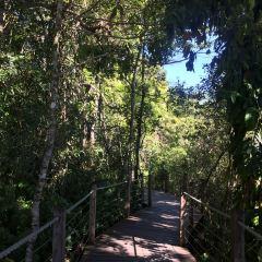 Daintree National Park User Photo