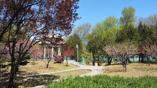 Bishui Fenghe Park