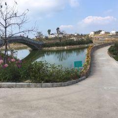 Tonggufeng Scenic Area User Photo