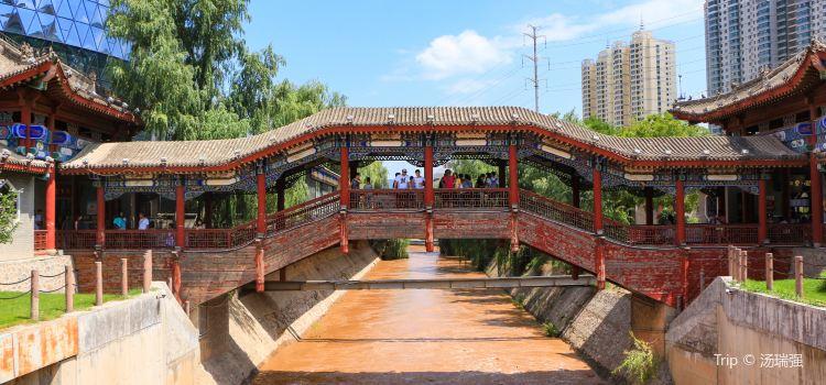 水車博覽園3