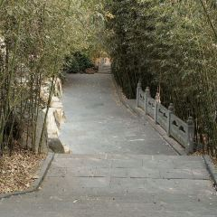 冠山風景旅遊區用戶圖片
