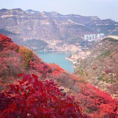 Tianci Mountain Sceneic Area User Photo