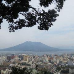 城山展望台用戶圖片