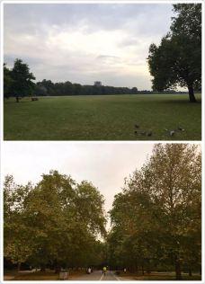 圣詹姆斯公园-伦敦-东张西望望东西