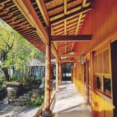 Qing Xi Zhuang Yuan User Photo