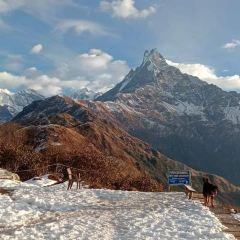 Mardi Himal Trek and Expedition Pvt. Ltd User Photo