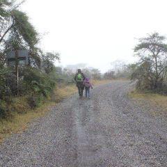 Parque National Los Quetzales User Photo