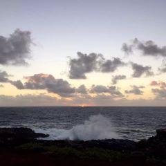 南科納海岸用戶圖片