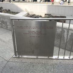 聖米歇爾廣場用戶圖片