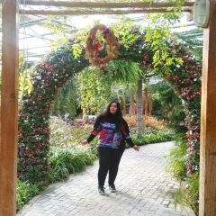 World Flower Garden User Photo