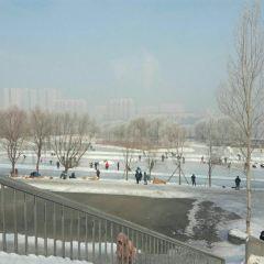 江畔公園用戶圖片