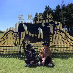 운람목장 여행 사진