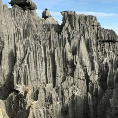 Tsingy de Bemaraha Strict Nature Reserve User Photo