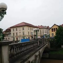龍橋用戶圖片
