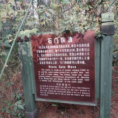 The Park of Yandu User Photo