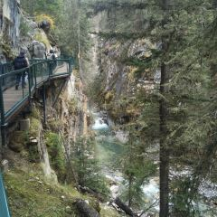 Johnston Canyon User Photo