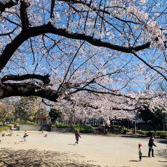 Hinode Park User Photo