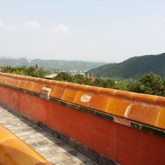 보타종승지묘 여행 사진