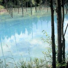 Blue Pond User Photo