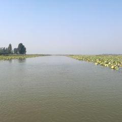 Weishan Lake Thousand Island Wetlands User Photo