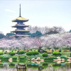 마산 풍경명승구, 동호 여행 사진