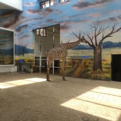 Tianjin Zoo User Photo