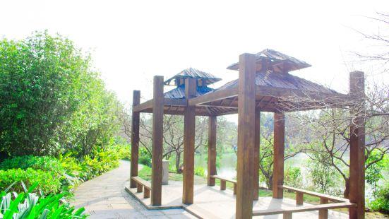 Luogang Scenic Resort