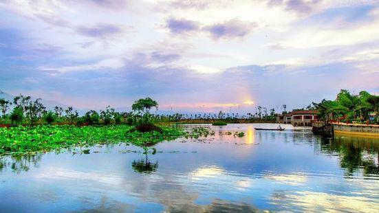 Yilong Lake Ten thousand Mu Lotus Garden