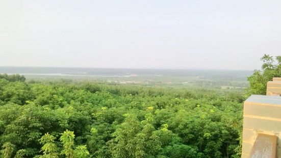 Caiqiao Mangrove Nature Reserve