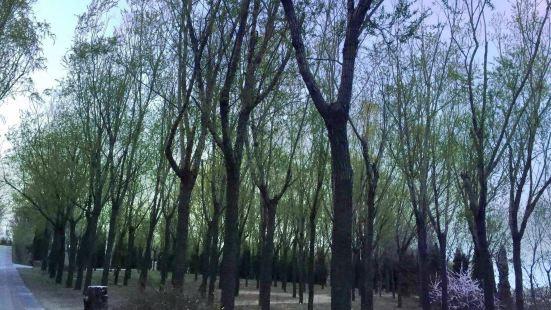 Jinxiuchuan Scenic Area