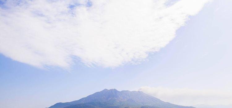 사쿠라지마 섬