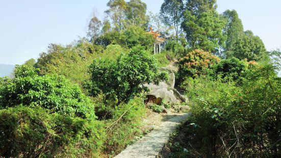 Longyandong Forest Park