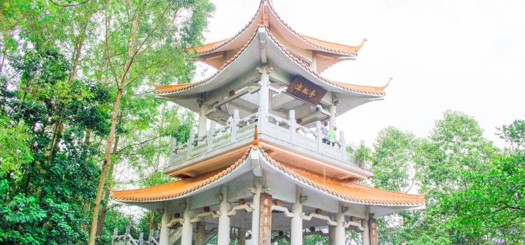 Longtoushan Forest Park