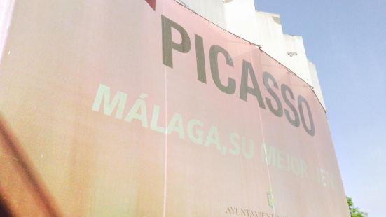 Picasso Foundation - Native Home Museum (Fundacion Picasso)