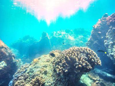 우즈저우섬 다이빙지역