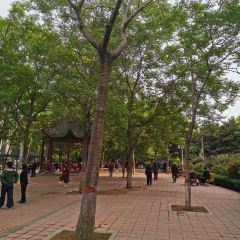 Wuyi Park (North Gate) User Photo