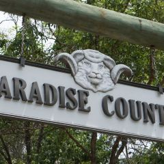 Paradise Country User Photo