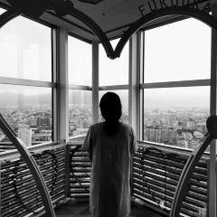 후쿠오카 타워 여행 사진